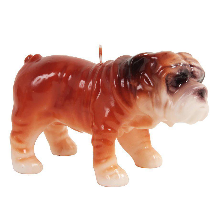شمع سال سگ 1397