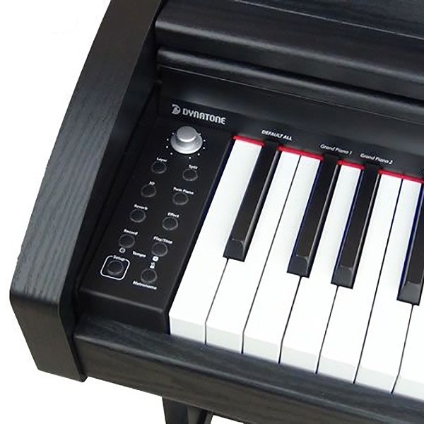 فروش نقدی و قسطی پیانوهای دیجیتال