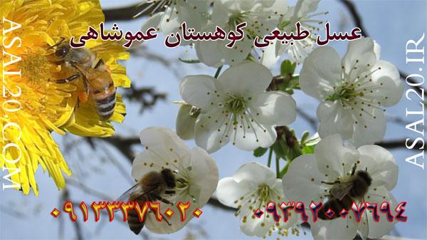 مرغوبترین عسل طبیعی ایران بااستاندارد اروپا به صورت تضمینی