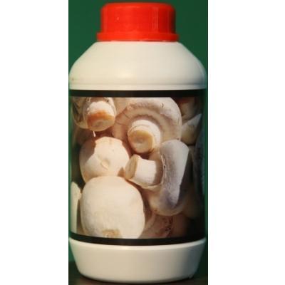 مکمل تقویتی پرورش قارچ نانو (دکمه ای –صدفی)