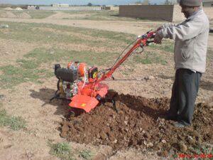 مجری امور ساخت و ساز و باغشهری