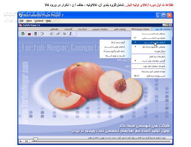 نرم افزارهای حسابداری(کامپیوترامید)