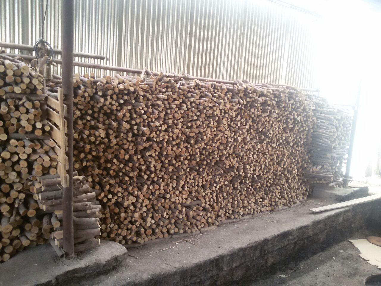 خرید چوب مخصوص تولیدذغال لیموقلیانی وکبابی