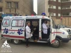 اورژانس و فوریتهای دامپزشکی حیوانات خانگی بیمارستان درین