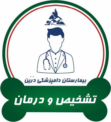 بخشهای بیمارستان دامپزشکی شبانه روزی درین