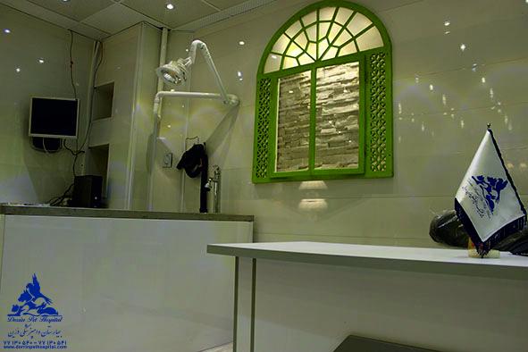 دندانپزشکی حیوانات خانگی بیمارستان دامپزشکی درین