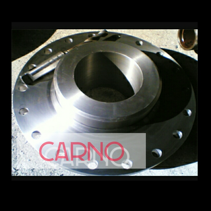گروه صنعتی کارنو