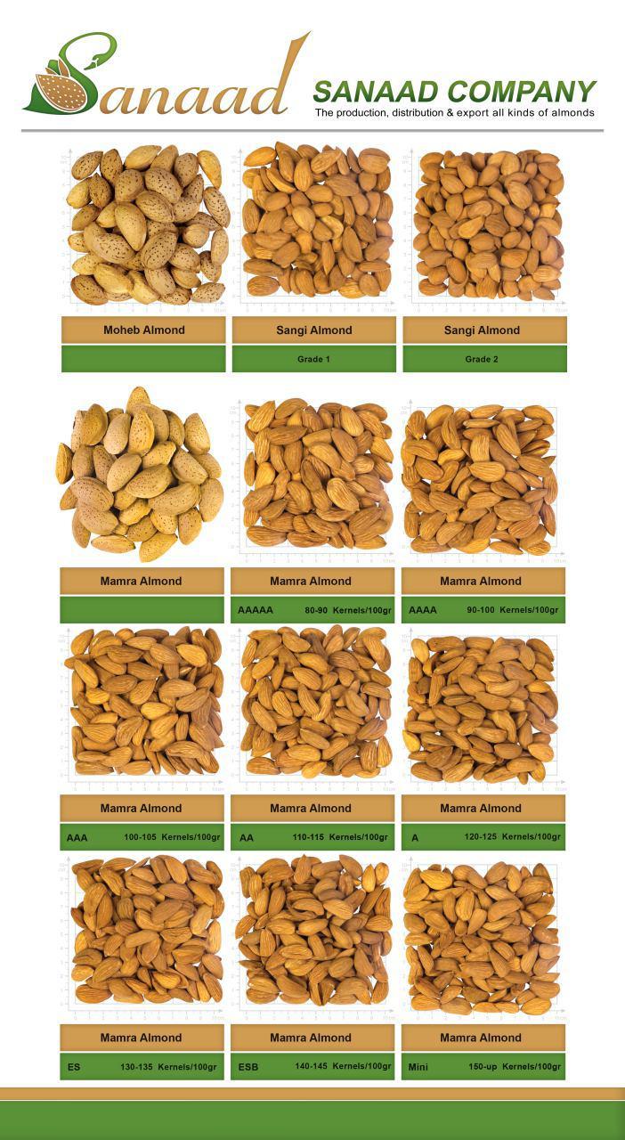 تولید،توزیع و صادرات انواع بادام