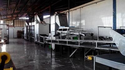 فروش کارخانه فرآوری و بسته بندی کشمش و مواد غذایی