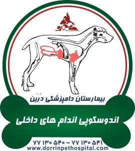 اندوسکوپی اندامهای داخلی حیوانات خانگی بیمارستان دامپزشکی درین