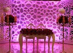 برگزارکننده و خدمات مجالس  تشریفات امید عروس پایتخ