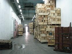 فروش سردخانه 5000 تنی زیر و بالای صفر در استان البرز